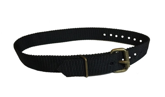 Picture of Safety Ladder Strap   CCT-483