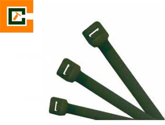 Picture of Plastic Cable Tie CCT-3X100-B