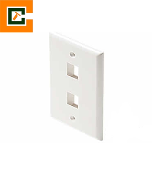 Picture of Double Port Faceplate   CCT-2FP