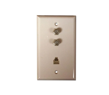 Picture of 4C Wall Plate With 2/F81  CCT-4273