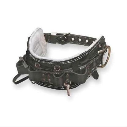 Picture of Full Floating Miller Body Belt  CCT-95N-24D