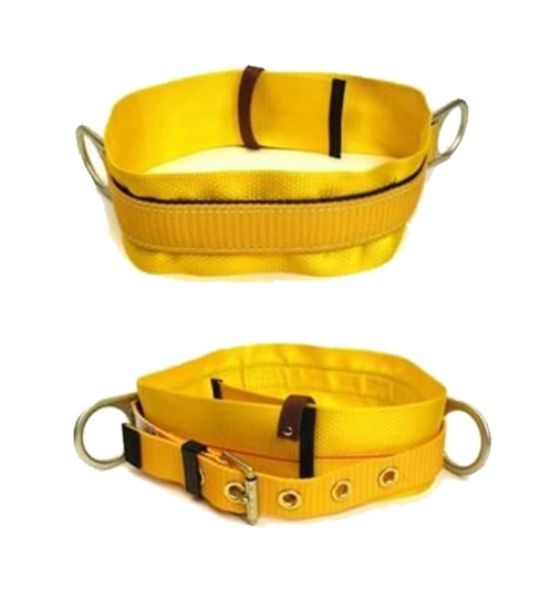 Picture of Safety Belt with D Ring  CCT-03213